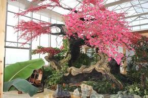 假树的制作-上海方力景观工程有限公司