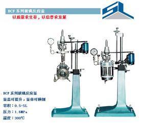 供应SYBF系列玻璃反应釜、实验反应釜、高压反应釜(高压釜)