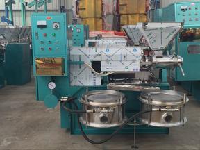 冷热螺旋榨油机 油坊专用机械 食用油榨油机设备