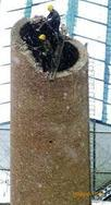 凌海烟囱维修公司【烟囱裂缝处理加固、烟囱加包箍,烟囱检修】