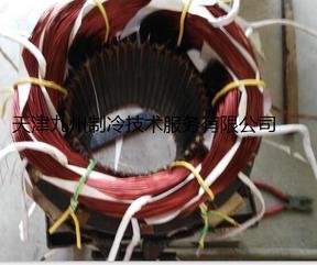 天津比泽尔螺杆式压缩机电机维修