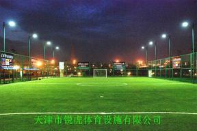 天津人工草皮-人工草坪足球场地施工建设厂商单位