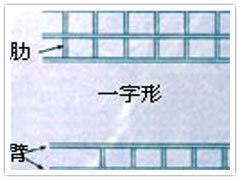 网片、电焊网、地热网、舒乐板网、砖带网、药筛网、钢丝网