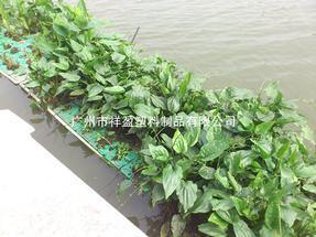 祥盈XYFC-003人工浮床 水质改善