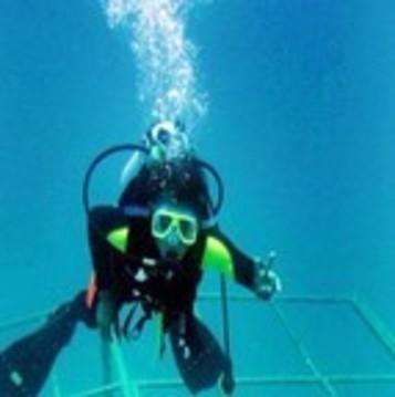 壁纸 海底 海底世界 海洋馆 水族馆 357_359