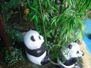 仿真动物、仿真熊猫