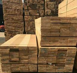 绍兴铁杉松木杉木建筑木材