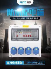 大量销售工业三防插座箱 防水防尘工业插座箱 防腐电源插座配电箱