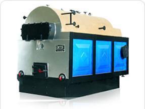 1吨燃煤蒸汽锅炉-新疆燃煤热水锅炉