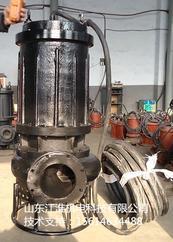 厂家供应 水电站排泥沙泵