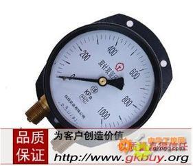 YZS-102双针压力表