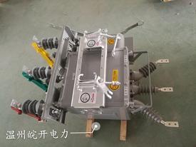 皖开新品发布ZW20-12FG看门狗分界开关