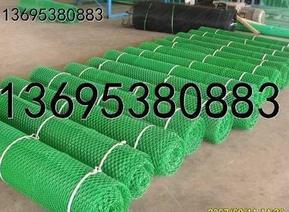 湖北三维植被网(三维网垫)