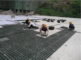 重庆厂家生产价格规格蓄排水板绿化排水板种植排水板车库排水板滤水板