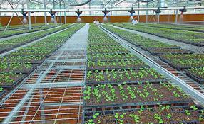 农田灌溉管,pvc灌溉管