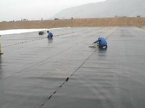 供应湖北HDPE土工膜最新价格