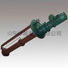 熔盐泵生产厂家 山东华威 熔盐液下泵GY50-310