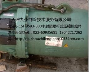 天津比泽尔CSH9593-300螺杆式压缩机抱轴维修