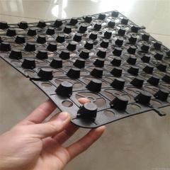深圳塑料排水板价格/多少钱_排水板厚度规格便宜厂家