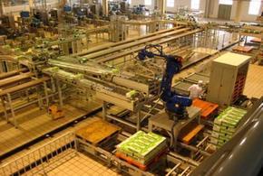 工业安川motoman码垛机器人系统集成|莫托曼码垛机械手