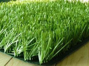 供应橄榄型单丝人工草坪