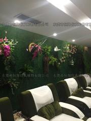 仿真植物墙 橱窗植物墙