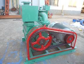 2BE1-203真空泵