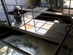 中心传动刮沫机/气浮池刮渣机