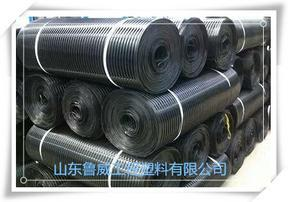 GSZ钢塑复合土工格栅价格厂家专业生产厂家