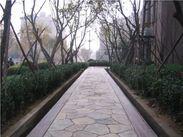 沧州彩色艺术地坪材料,彩色艺术地坪模具免费