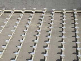 BAF生物滤池专用曝气设备