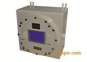 PUE-202型高精度防爆氢分析仪