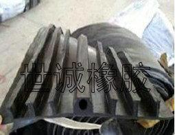 外贴式橡胶止水带 国标外贴式橡胶止水带