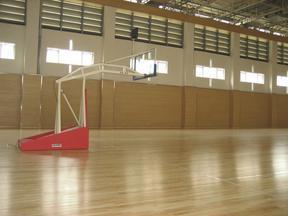 供应篮球场木地板 体育木地板