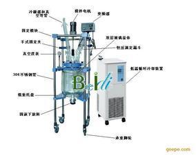 BDX10L-50L长沙玻璃反应釜