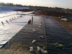 陵县1毫米HDPE土工膜厂家