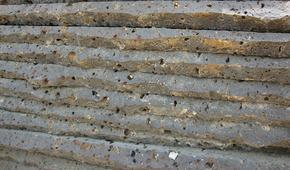 火山岩窝蜂文化石 FSSW116