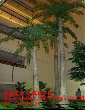厂家直销仿真椰子树海枣树棕榈树老人葵榕树