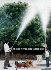 佛山市植物、树木、大树、花卉苗木喷药除虫服务