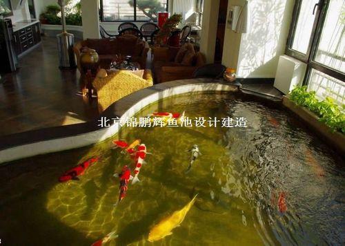室内鱼池设计 锦鲤鱼池过滤系统室内小型鱼池效果图片