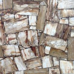 纯天然木化石板材