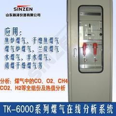 褐煤干燥含氧量在线分析仪生产厂家