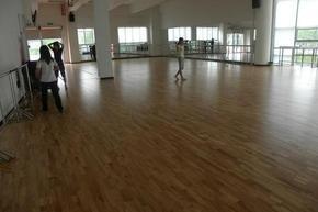 体育运动地板  运动地板厂家    洁净无尘车间专用地板