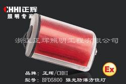 BFD5800防爆方位灯