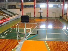 篮球PVC塑胶运动地垫地毯