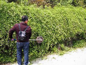 24伏胶电型多功能电动绿篱机