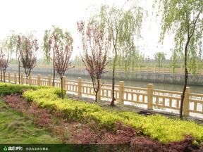 仿木护栏,河道护栏,景观护栏