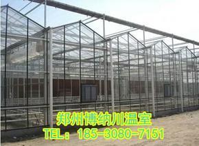 商丘智能连栋温室建造,郑州博纳川厂家报价