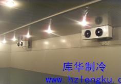 浙江库华低温冷库安装公司,浙江大型低温库建造