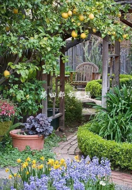 别墅庭院菜园设计施工-屋顶菜园设计打造